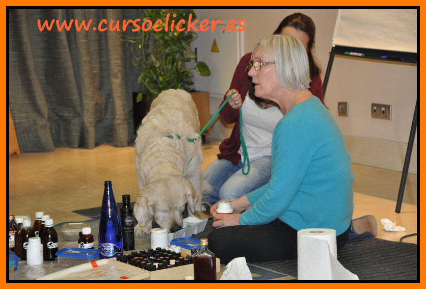 zoofarmacognosis madrid mary rodriguez y cursoclicker enero 2015 01