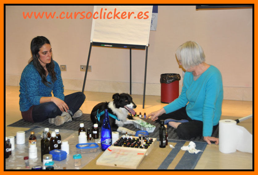 zoofarmacognosis madrid mary rodriguez y cursoclicker enero 2015 06