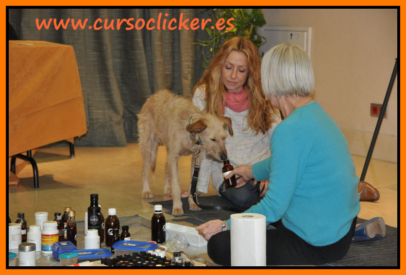 zoofarmacognosis madrid mary rodriguez y cursoclicker enero 2015 21