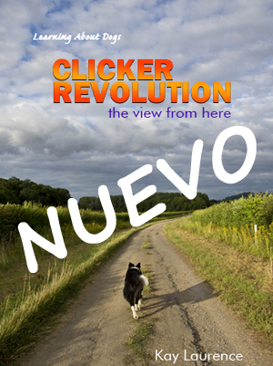 Clicker RevolutioncovNUEVO